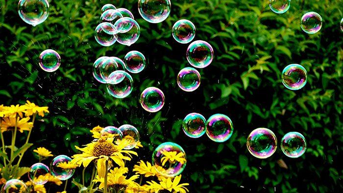 Bolhas de sabão flutuando e flores